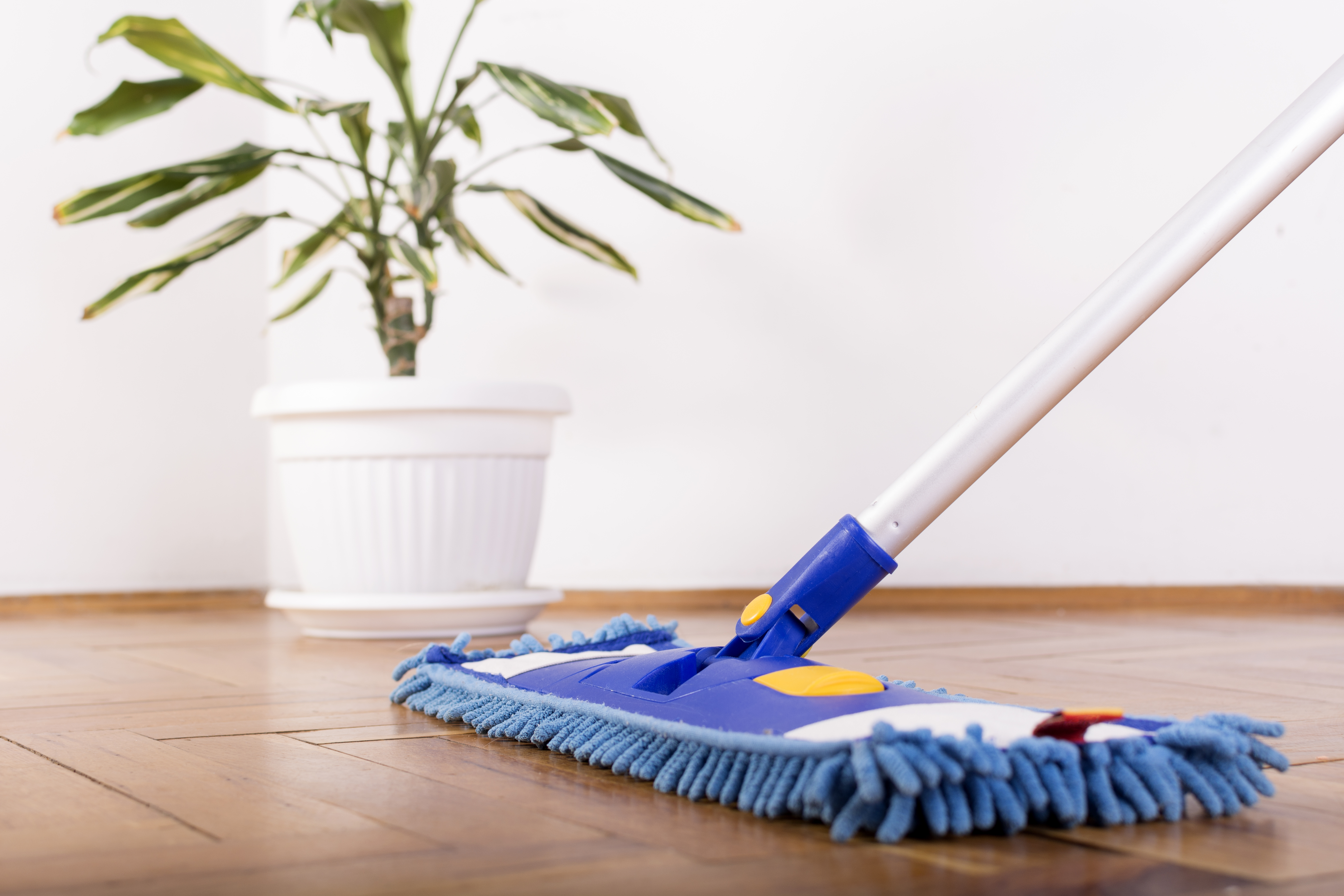 How to Clean Hardwood